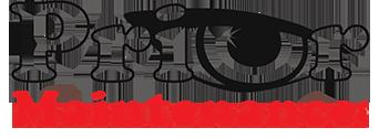 Prior Maintenance Logo